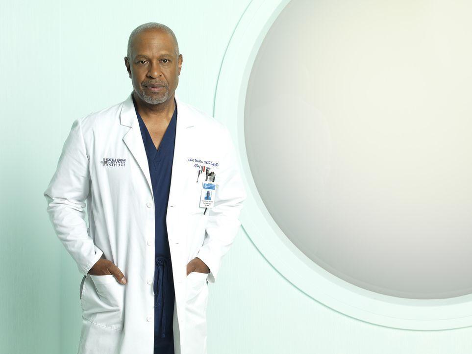 (7. Staffel) - Beruflich weiß Dr. Richard Webber (James Pickens, Jr.) immer, was er tut ... - Bildquelle: ABC Studios