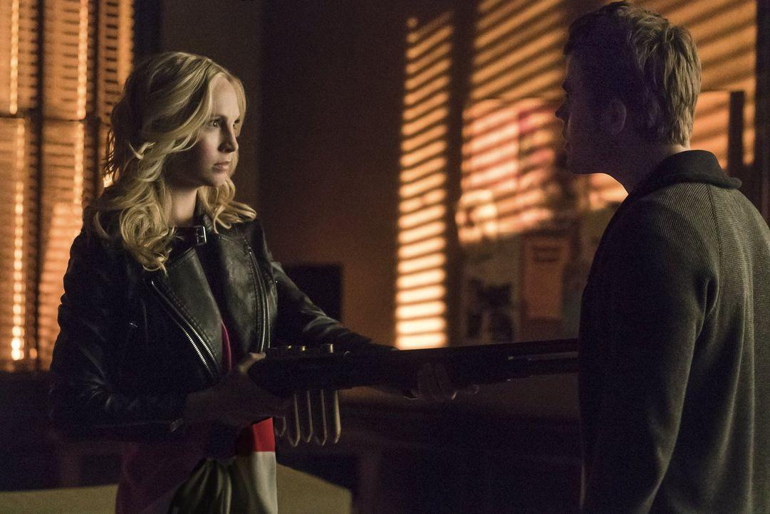 Zwischen Caroline (Candice Accola, l.) und Stefan (Paul Wesley, r.) entbrennt ein regelloser Kampf ... - Bildquelle: Warner Bros. Entertainment, Inc