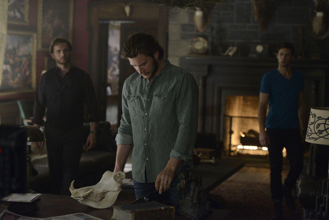 Als ein Mädchen ermordet wird, suchen Jeremy (Greg Bryk, l.), Clay (Greyston Holt, M.) und Nick (Steve Lund, r.) nach dem Mörder, aber nur einer im... - Bildquelle: 2014 She-Wolf Season 1 Productions Inc.