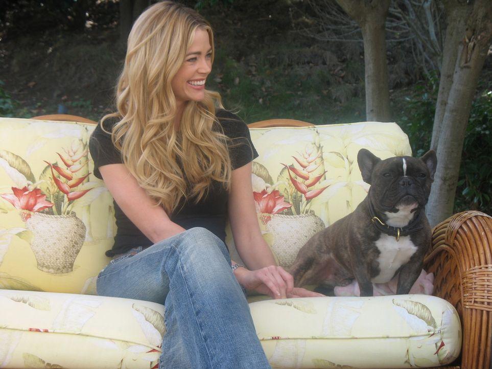 Denise Richards bittet den Hundeflüsterer Cesar Millan um Hilfe ... - Bildquelle: Rive Gauche Intern. Television
