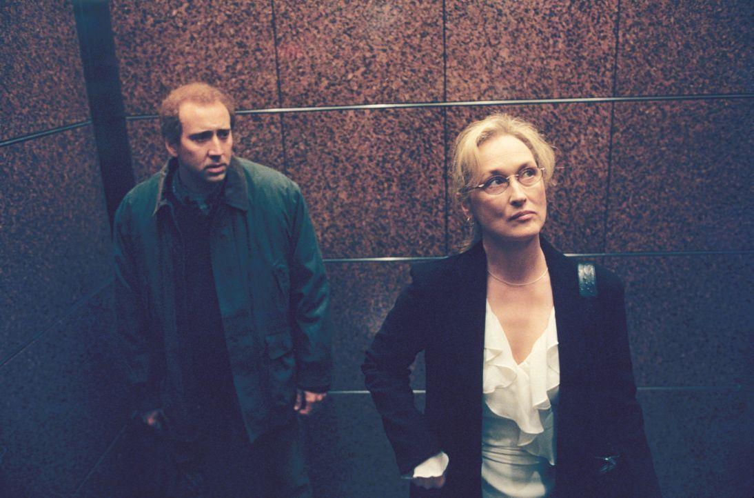 """Susan Orlean (Meryl Streep, r.) ist die Autorin des Romans """"Der Orchideendieb"""", den der unsichere Drehbuchautor Charlie Kaufmann (Nicolas Cage, l.)... - Bildquelle: 2003 Sony Pictures Television International"""
