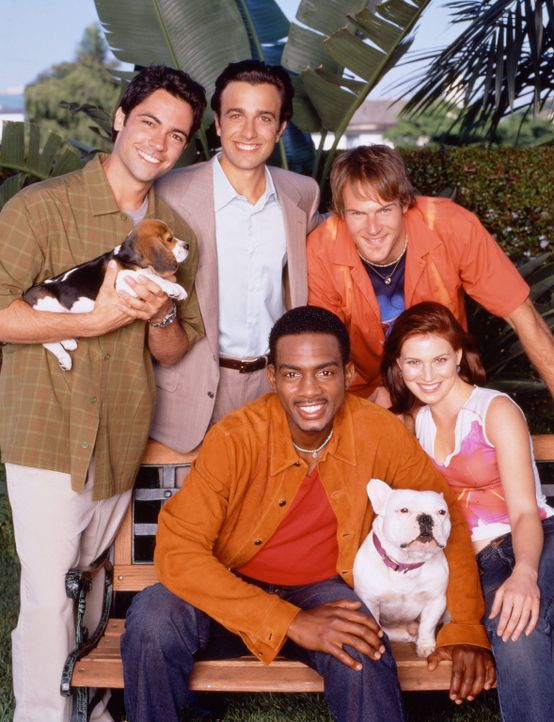 Cast on Park Bench with Dogs - Bildquelle: Paramount Television