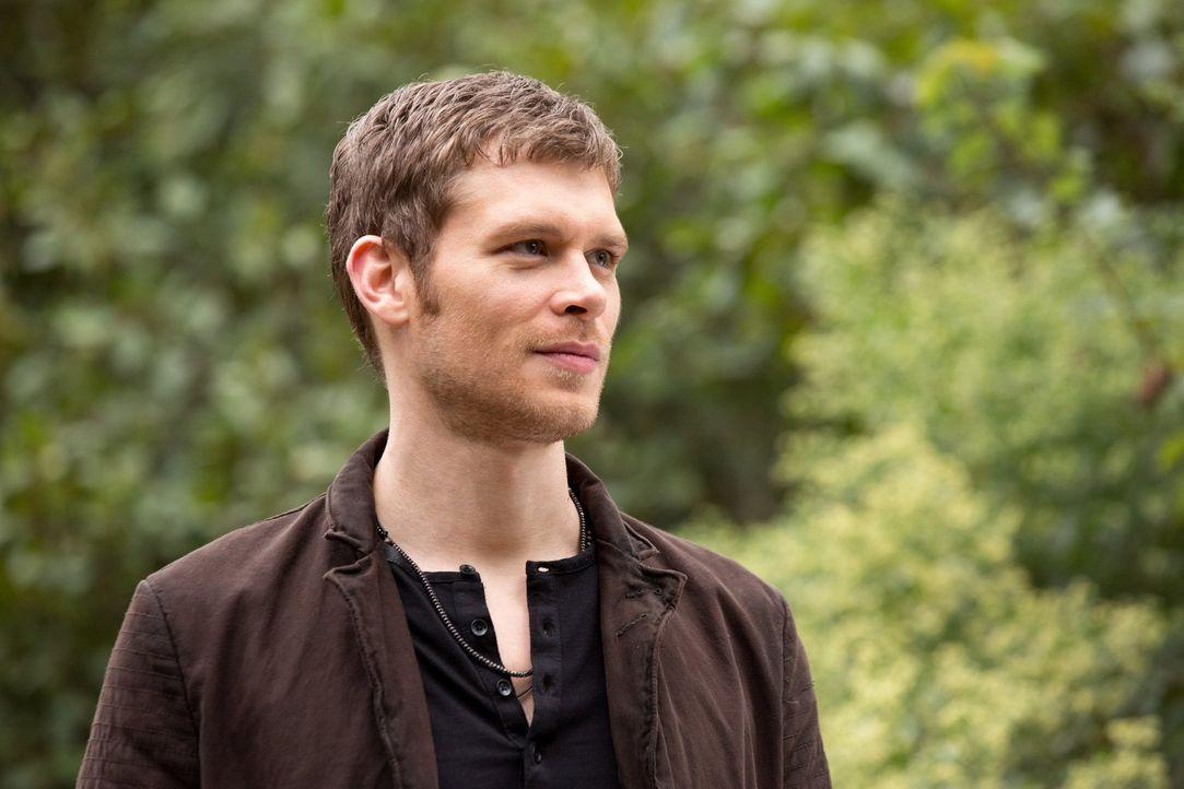 Eine unerwartete und bedenkliche Begegnung sorgt bei Klaus (Joseph Morgen) für Wut und Verwirrung ... - Bildquelle: Warner Bros. Television