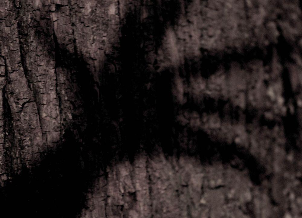 Der Legende nach ist der schwarze Mann unsichtbar für Erwachsene. Nur Kinder können ihn sehen. Es sucht alle paar Jahre ein kleines Dorf auf, um d... - Bildquelle: Stefan Haring ProSieben