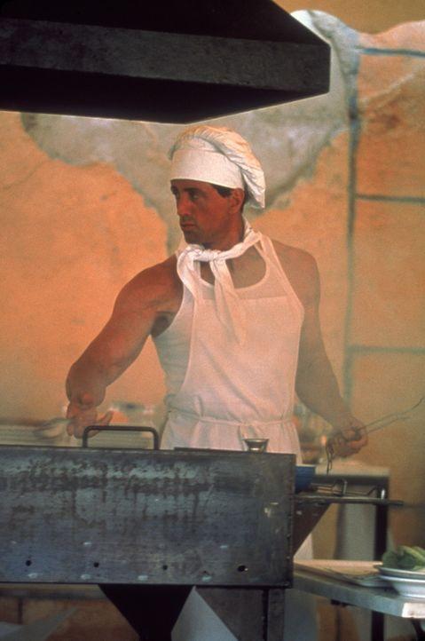 Jennifers Leben ist sein Job: Frankie Delano (Sylvester Stallone) ... - Bildquelle: Warner Bros.