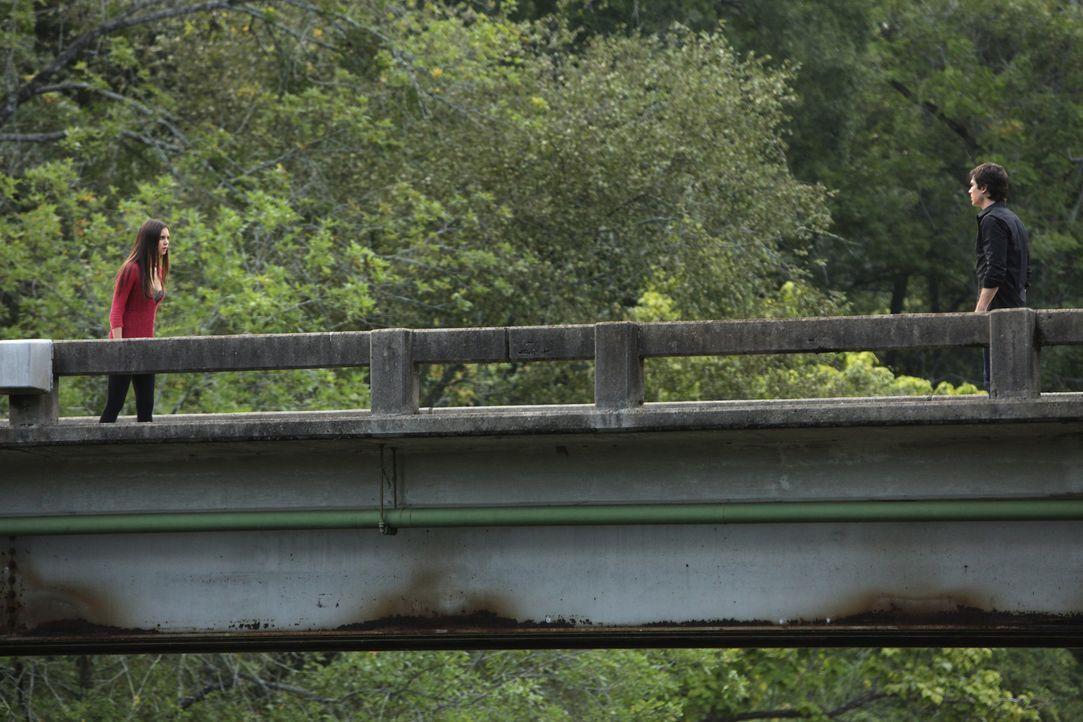 Damon (Ian Somerhalder, r.) tut sein Bestes, um Elena (Nina Dobrev, l.) aus der miserable Lage zu helfen - aber er kann nur wenig helfen ... - Bildquelle: Warner Brothers