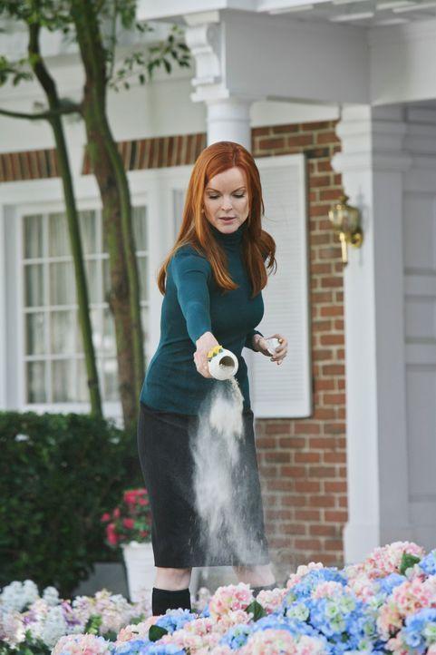 Edie soll in der Wisteria Lane bleiben, da sind sich Bree (Marcia Cross), Lynette, Susan, Gabrielle und Mrs. McCluskey einig. Jede von ihnen nimmt a... - Bildquelle: ABC Studios