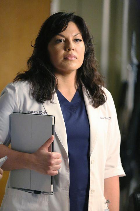 Maggie bittet Callie (Sara Ramirez) um Hilfe bei einer Patientin, die sich vermutlich einen Hüftbruch in Folge eines Sexunfalls, ausgelöst durch das... - Bildquelle: ABC Studios