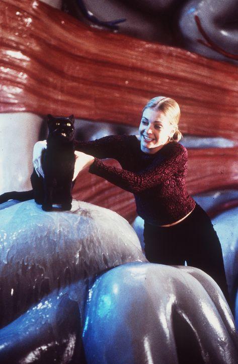 Salem (l.) ergattert im anderen Reich ein Spielzeugraumschiff. Als Sabrina (Melissa Joan Hart, r.) einen falschen Hebel umlegt, schrumpfen die beide... - Bildquelle: Paramount Pictures