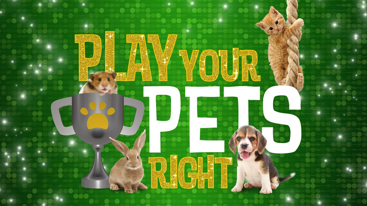 (1. Staffel) - Game of Pets - Artwork - Bildquelle: Lion & all3media international