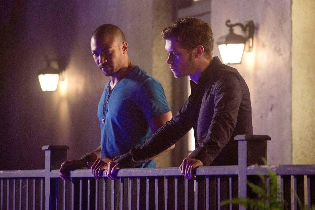 Klaus (Joseph Morgan) und Marcel (Charles Michael Davis) - Bildquelle: Warner Bros. Entertainment Inc.