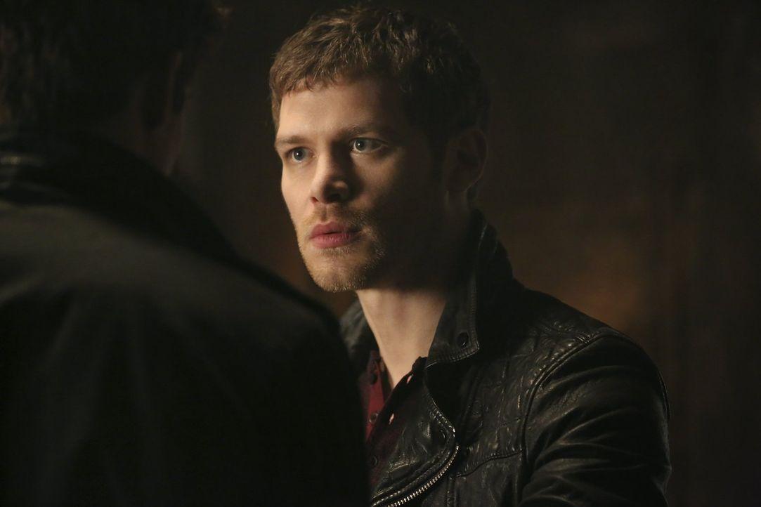 Der Kampf um das Vertrauen geht auch für Klaus (Joseph Morgan) in eine neue Runde ... - Bildquelle: Warner Bros. Entertainment, Inc
