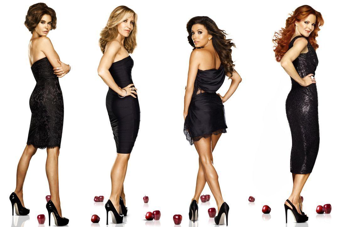 (8. Staffel) - Spielen perfekte Hausfrauen, doch hinter der makellosen Fassade ereignen sich große Dramen: Lynette (Felicity Huffman, 2.v.l.), Bree... - Bildquelle: ABC Studios
