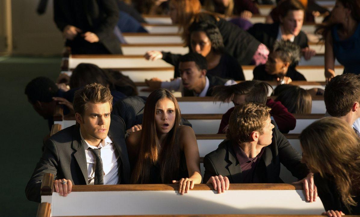 Dass der Mörder skrupellos auf einer Beerdigung tötet, entsetzt Stefan (Paul Wesley, l.), Elena (Nina Dobrev, 2.v.l.), Matt (Zach Roerig, M.) und Je... - Bildquelle: Warner Brothers