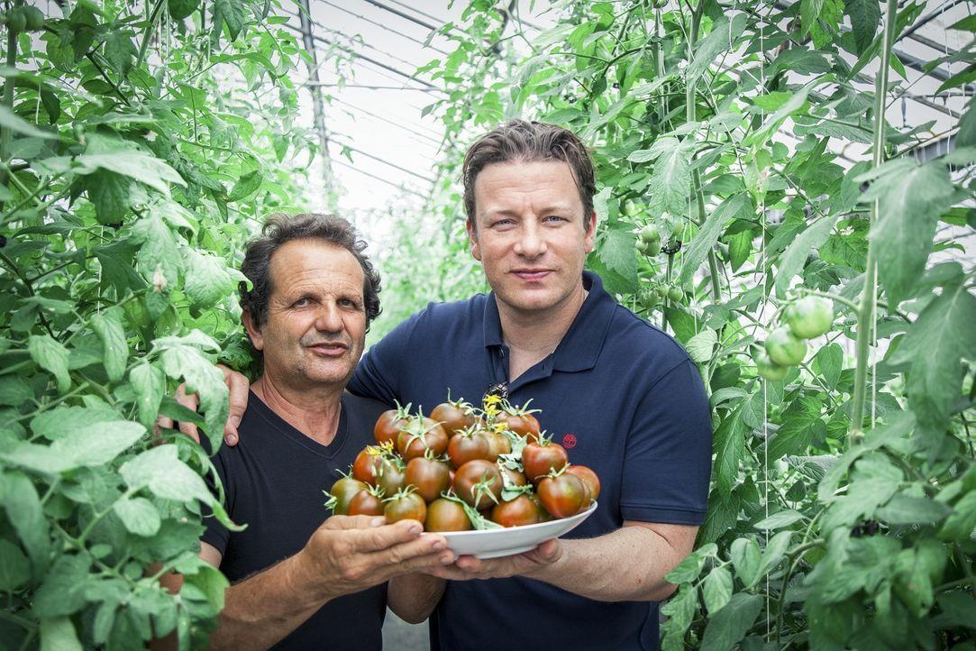 In Sardinien trifft Jamie Oliver (r.) auf den Farmer Giancarlo Congiu (l.), der die Tomate auf ein neues Level hebt ... - Bildquelle: 2016 Jamie Oliver Enterprises Limited