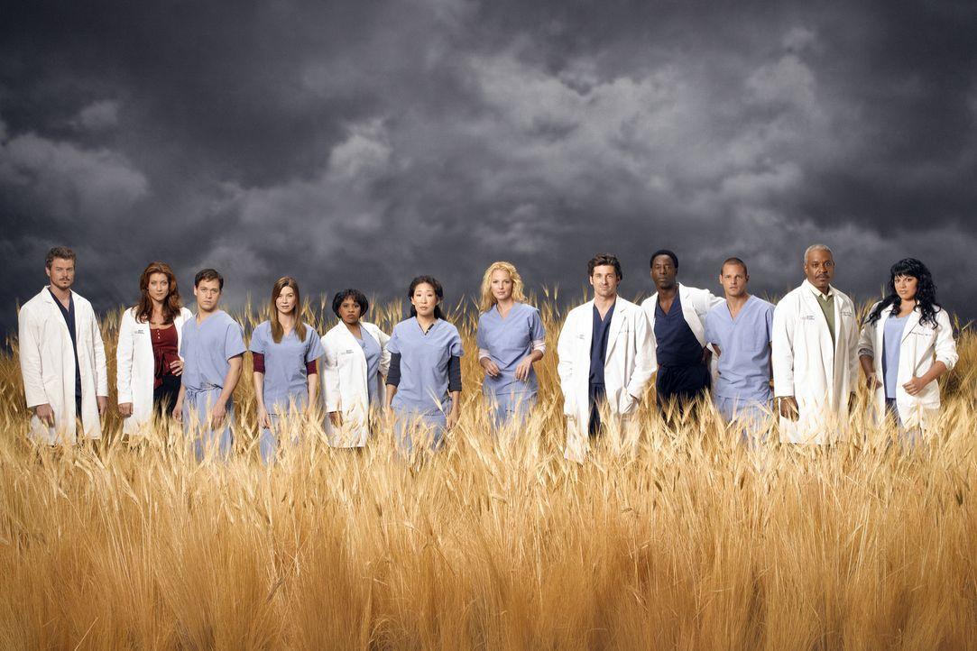 (3. Staffel) - Die Belegschaft des Seattle Grace Hospitals: (v.l.n.r.) Dr. Mark Sloan (Eric Dane), Dr. Addison Shepard (Kate Walsh), Dr. George O'Ma... - Bildquelle: Touchstone Television