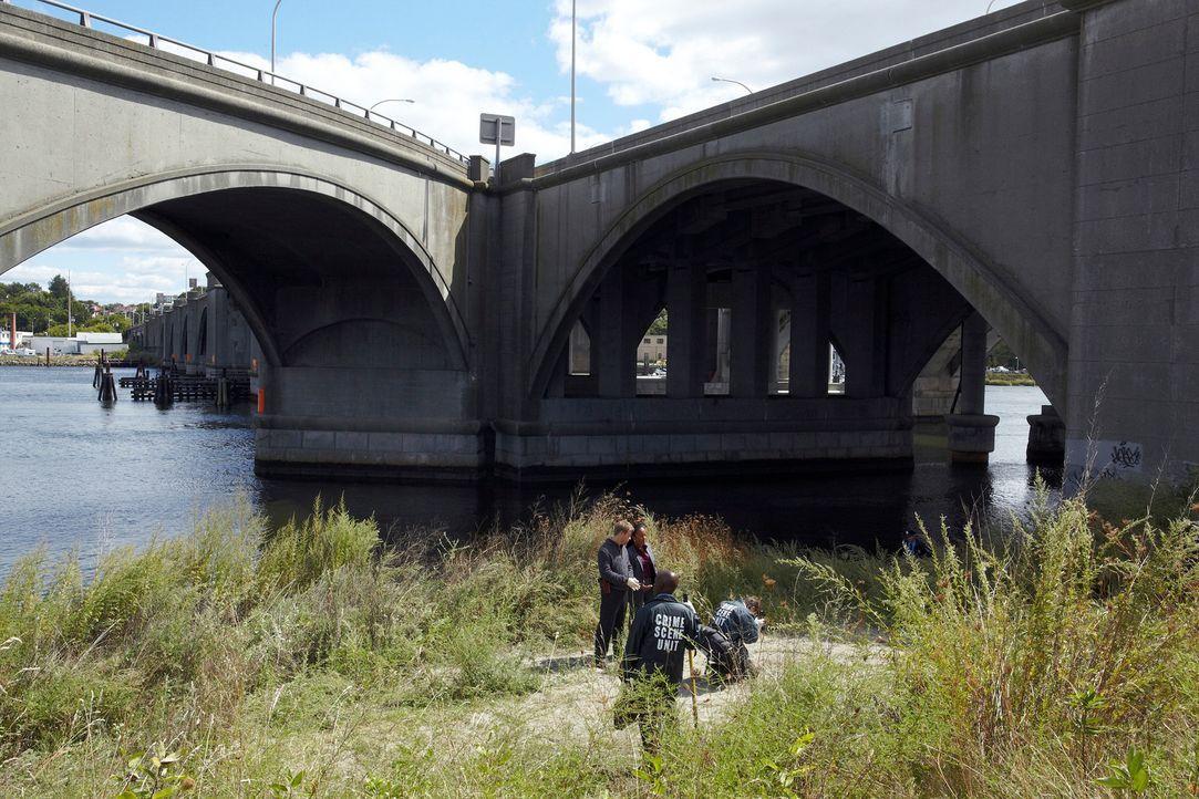 Das menschliche Puzzle: Peter (Nicholas Bishop, hinten l.) und Samantha (Sonja Sohn, hinten r.) ... - Bildquelle: ABC Studios