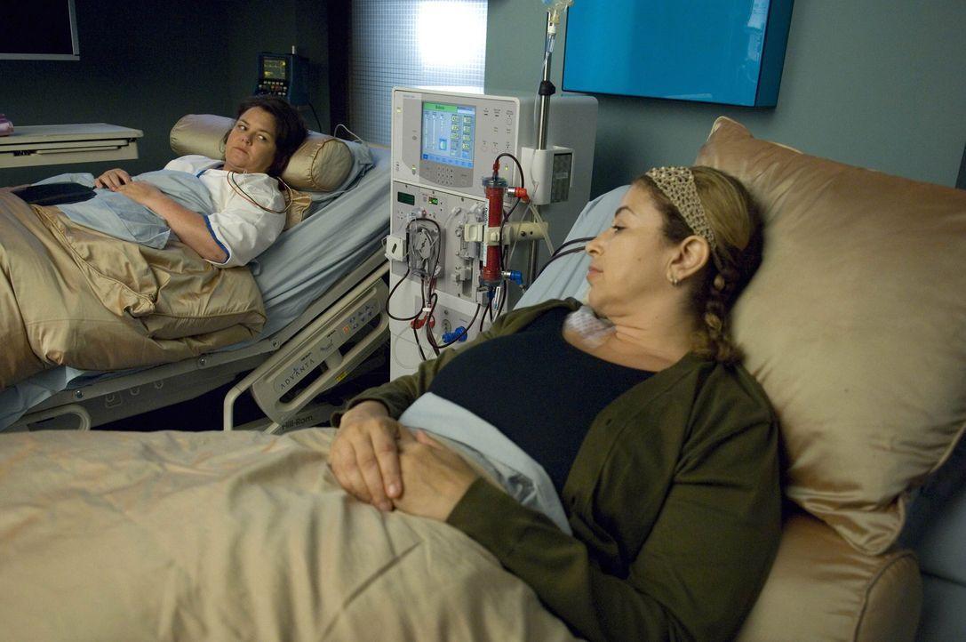 Sean gesteht Liz (Roma, Maffia, r.), dass er sie bezüglich der Organspende angelogen hat und möchte ihr nun seine Niere spenden. Liz ist gerührt,... - Bildquelle: TM and   2004 Warner Bros. Entertainment Inc. All Rights Reserved.