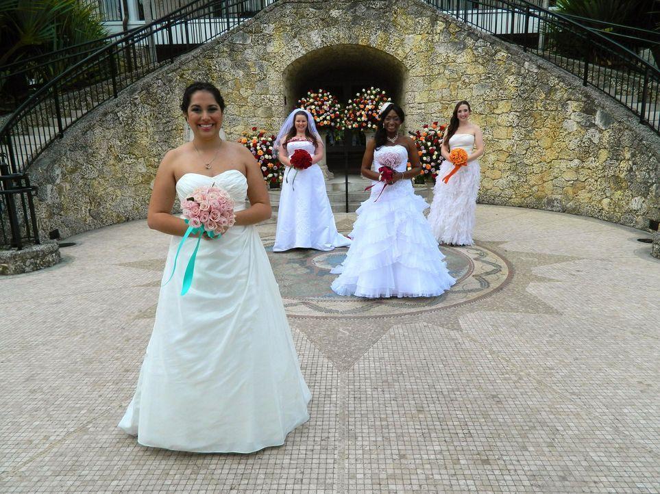 Kann Vivian (l.) die anderen Bräute Kim (2.v.l.), Debbie (2.v.r.) und Bianca (r.) mit ihrer Hochzeit überzeugen? - Bildquelle: Richard Vagg DCL