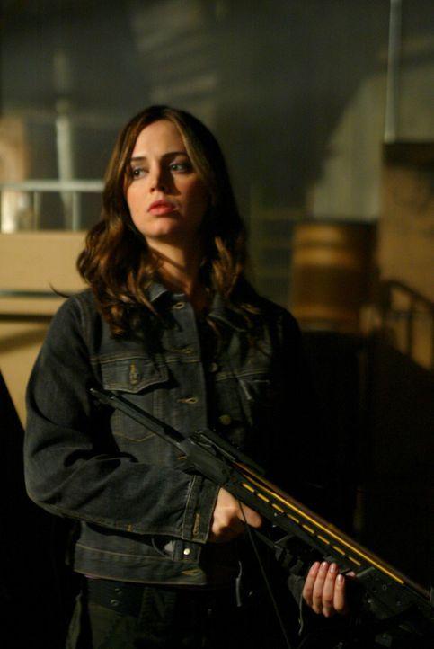 Faith (Eliza Dushku) soll Wesley helfen, Angelus lebend zu fangen ... - Bildquelle: The WB Television Network