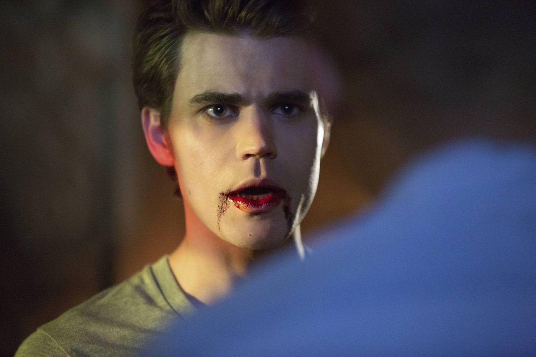 Sein Gedächtnis hat Stefan (Paul Wesley) zwar verloren, seinen Blutdurst jedoch nicht ... - Bildquelle: Warner Brothers