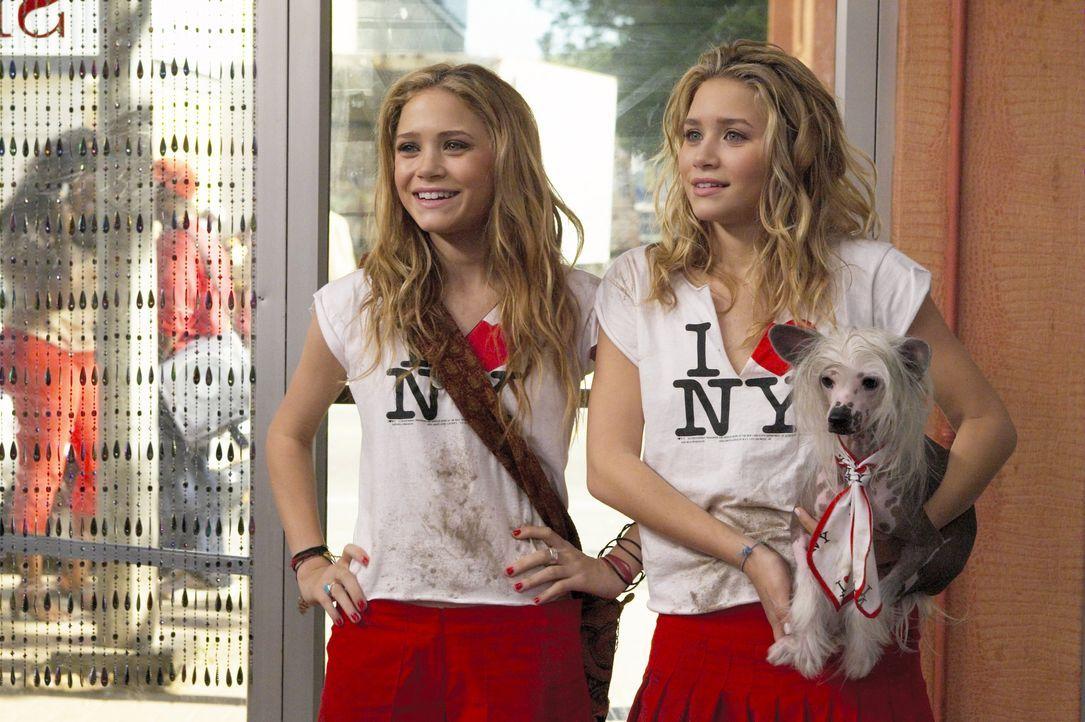 Ein verrückter Tag in New York 2004 - Bildquelle: Warner Bros. Entertainment, Inc