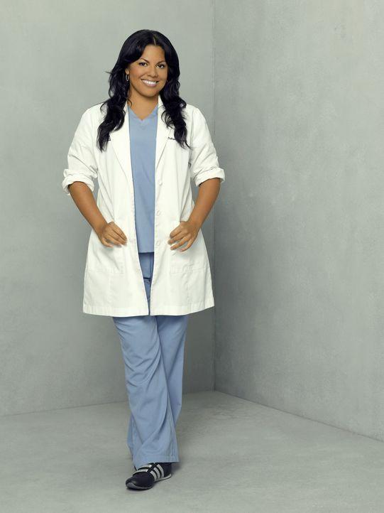 (4. Staffel) - Dr. Callie Torres (Sara Ramirez) fungiert als neue Ausbilderin ... - Bildquelle: Touchstone Television