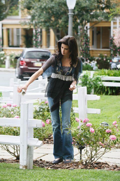 Gibt Edie die letzte Ruhestätte: Susan (Teri Hatcher) ... - Bildquelle: ABC Studios