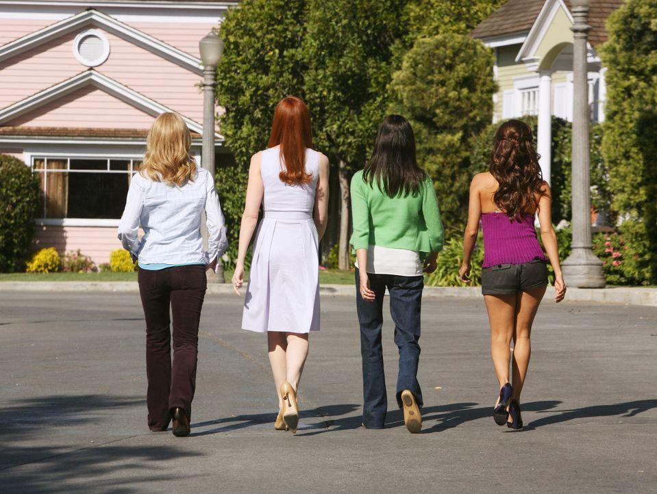 Damit hätte Edie nicht gerechnet: Lynette (Felicity Huffman, l.), Susan (Teri Hatcher, 2.v.r.), Gabrielle (Eva Longoria, r.) und Bree (Marcia Cross,... - Bildquelle: ABC Studios