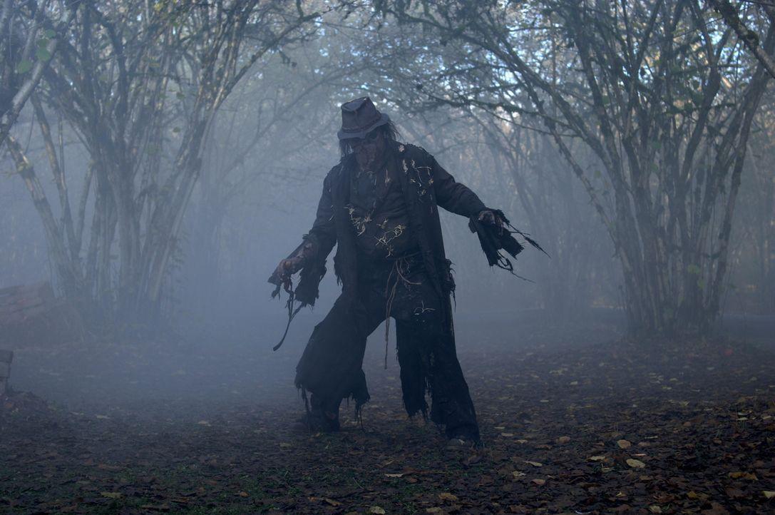 Sean und Dean glauben, dass es sich bei der Vogelscheuche (Mike Carpenter) um irgendeinen heidnischen Gott handelt, der als Opfergabe unschuldige Pä... - Bildquelle: Warner Bros. Television