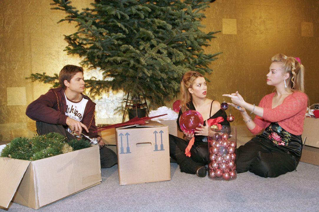 Timo (Matthias Dietrich, l.), Kim (Lara-Isabelle Rentinck, r.) und Hannah (Laura Osswald, M.) bekommen den Auftrag, gemeinsam den Weihnachtsbaum zu... - Bildquelle: Noreen Flynn SAT.1 / Noreen Flynn