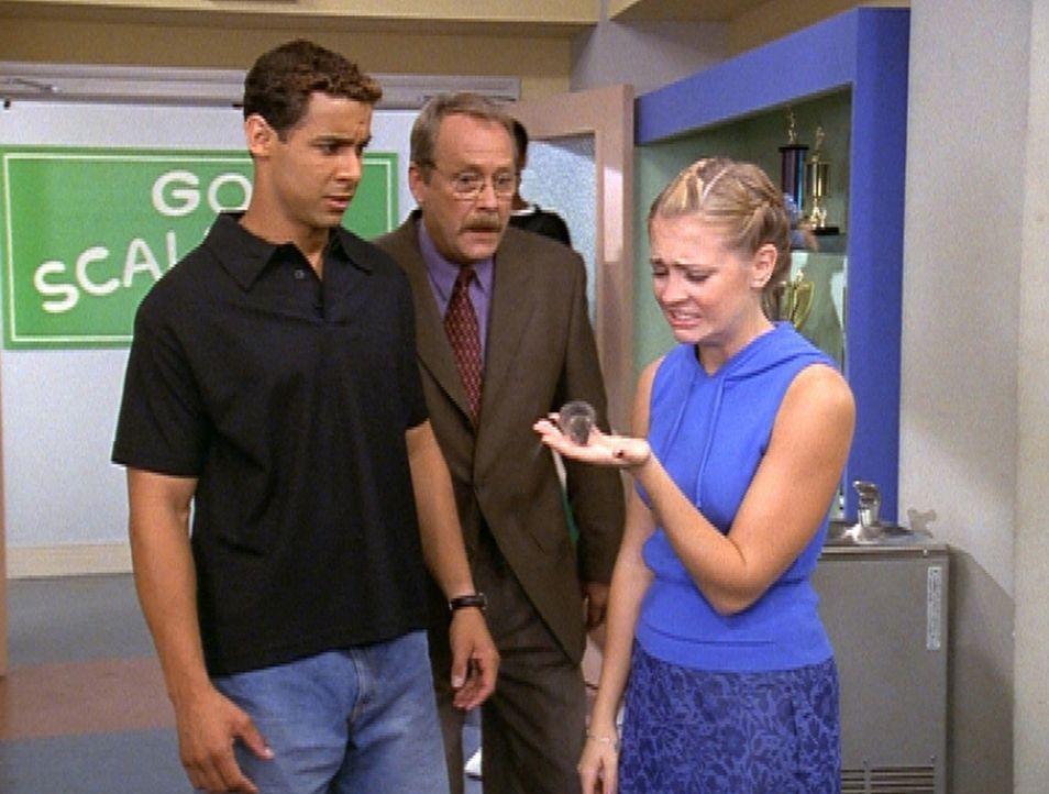 Mr. Kraft (Martin Mull, M.) und Harveys Freund Brad (Jon Huertas, l.) versuchen mit allen Mitteln, Sabrina (Melissa Joan Hart, r.) in Verlegenheit z... - Bildquelle: Paramount Pictures
