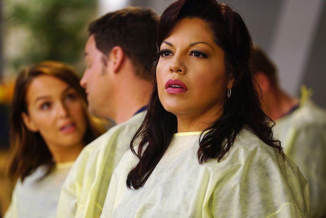 Im Einsatz, um Leben zu retten: Callie (Sara Ramirez) ... - Bildquelle: ABC Studios
