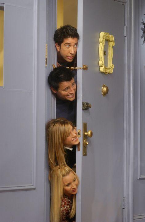 Monica ist sauer und will Joey (Matt LeBlanc, 2.v.oben), Ross (David Schwimmer, oben), Rachel (Jennifer Aniston, 2.v.unten) und Phoebe (Lisa Kudrow,... - Bildquelle: 2003 Warner Brothers International Television