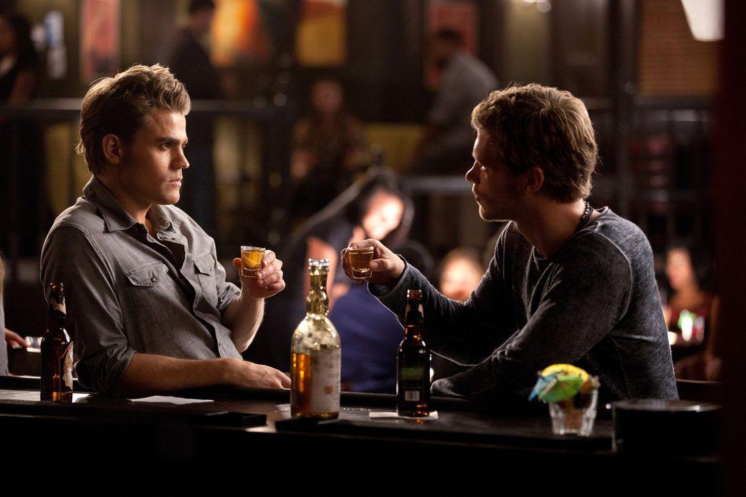 Werden Stefan Salvatore (Paul Wesley, l.) und Klaus (Joseph Morgan, r.) ihren Streit begraben? - Bildquelle: © Warner Bros. Entertainment Inc.