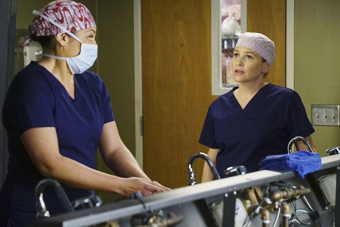 Sind nicht einer Meinung: Arizona (Jessica Capshaw, r.) und Callie (Sara Ramirez, l.) ... - Bildquelle: Richard Cartwright ABC Studios