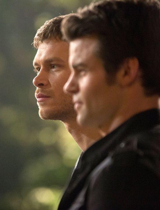 Brüder mit unterschiedlichen Prioritäten - Bildquelle: Warner Bros. Entertainment Inc.