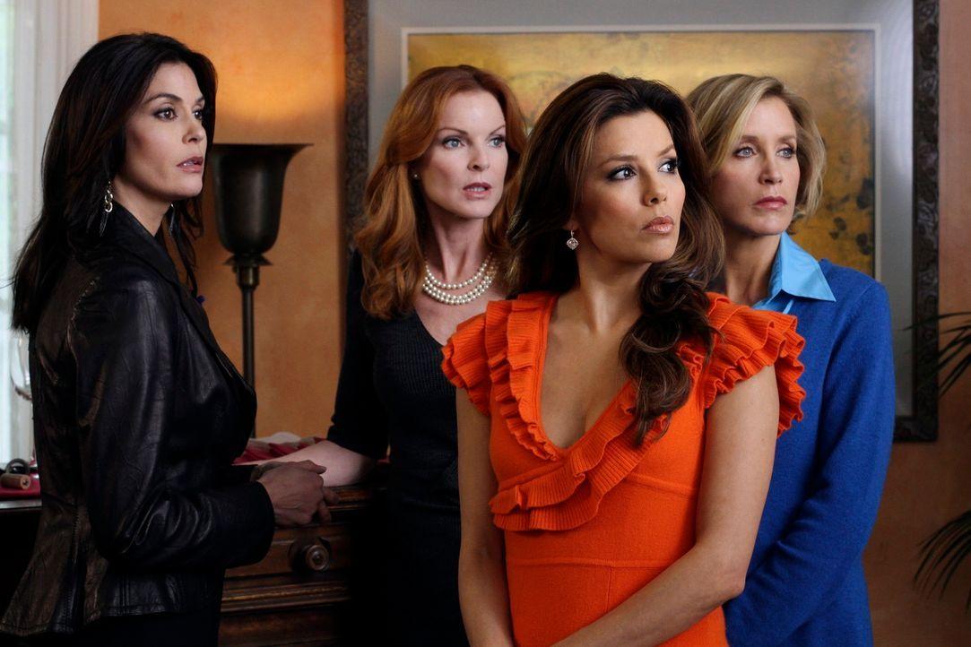 Bei der Willkommensparty für Katherine stellt Susan (Teri Hatcher, l.) Robin ihren Freundinnen vor. Bree (Marica Cross, 2.v.l.), Lynette (Felicity H... - Bildquelle: ABC Studios
