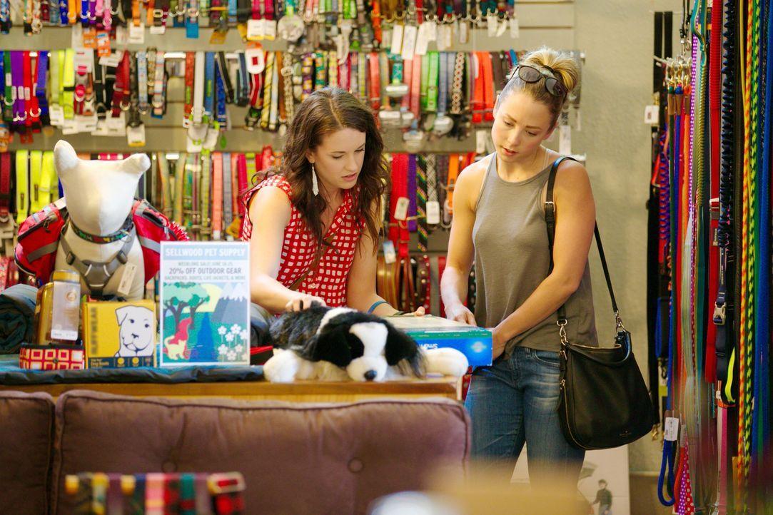 Bei ihrem aktuellen Projekt müssen Brianna (l.) und Michelle (r.) darauf achten, dass ihr Wohnwagenhaus auch für den Hund von Scott und Tamsen geeig... - Bildquelle: 2015,HGTV/Scripps Networks, LLC. All Rights Reserved