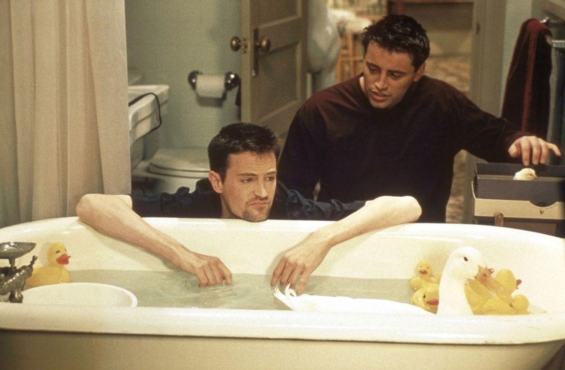 Joey (Matt LeBlanc, r.) spielt mit seinem Küken in der Badewanne. Für Chandler (Matthew Perry, l.) steht fest, dass es unbedingt einen Spielkamera... - Bildquelle: TM+  2000 WARNER BROS.