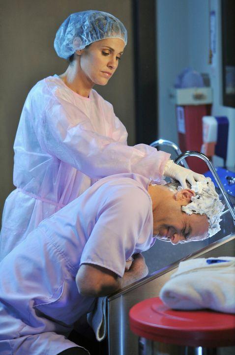 Cooper (Paul Adelstein, r.) bittet Violet (Amy Brenneman, l.) um Hilfe. Er hat die Läuse und braucht jemanden, der ihm hilft, sie wieder loszuwerden... - Bildquelle: ABC Studios