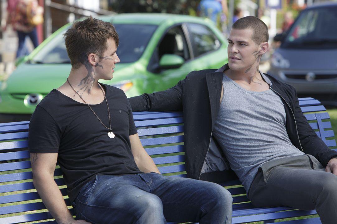 Während Drake (Greg Finley, r.) versucht, seine neueste Mission auszuführen, erhofft sich Roman (Matt Lanter, l.) endlich Hinweise, seinen Vater bet... - Bildquelle: 2014 The CW Network, LLC. All rights reserved.