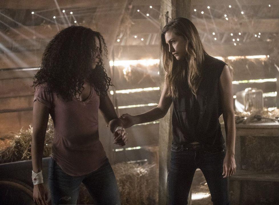 Ist es wirklich die richtige Entscheidung von Hayley (Phoebe Tonkin, r.), Keelin (Christina Marie Moses, l.) gehen zu lassen? - Bildquelle: 2016 Warner Brothers
