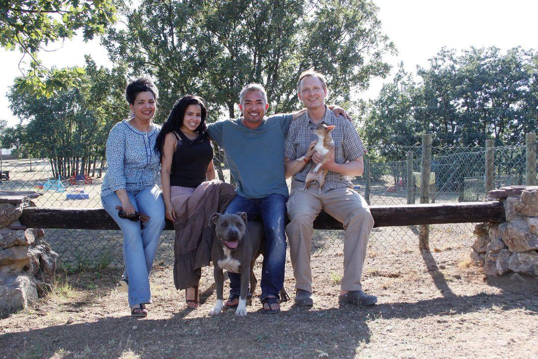 Hat Cesar (2.v.r.) die perfekte Familie für Harry gefunden? - Bildquelle: Belén Ruiz Lanzas 360 Powwow, LLC / Belén Ruiz Lanzas