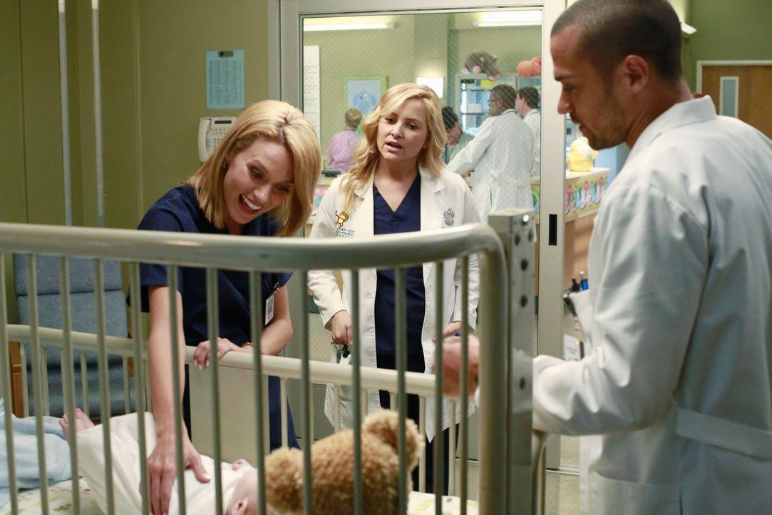 Jackson (Jesse Williams, r.) lässt die Gesichtsschädelspezialistin Lauren (Hilarie Burton, l.) einfliegen. Arizona (Jessica Capshaw, M.) spürt di... - Bildquelle: ABC Studios