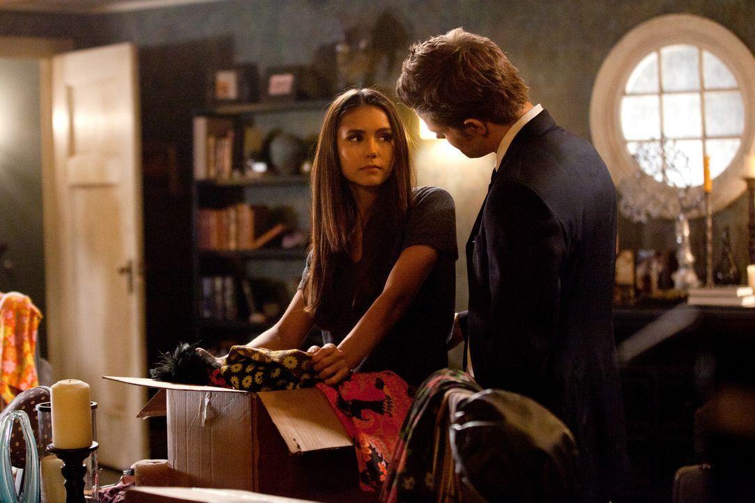Elenas Meinung über Damon - Bildquelle: Warner Bros. Entertainment Inc.