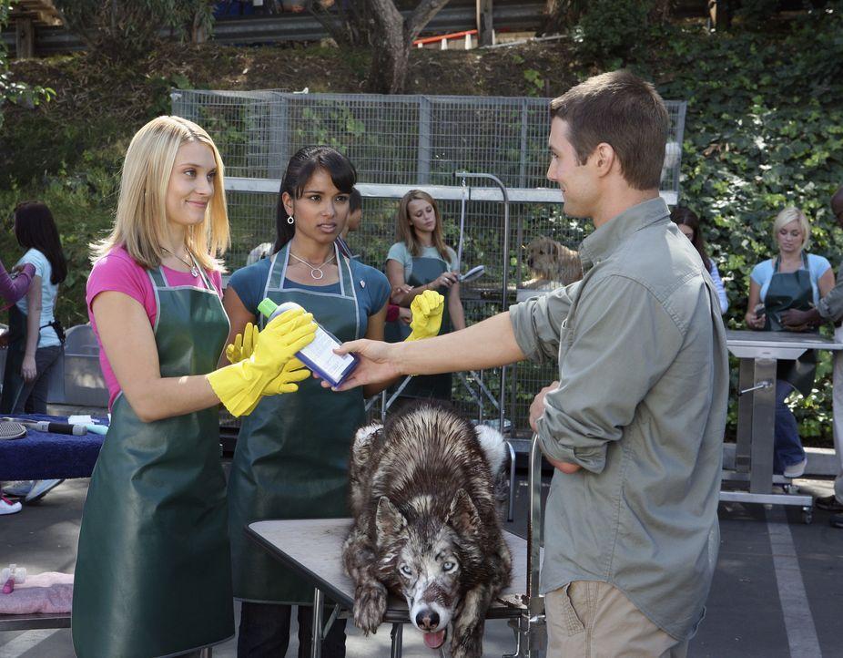 Während der freiwilligen Sozialarbeit im Tierheim lernt Casey (Spencer Grammer, l.) Jonah (Jerad Anderson, r.) kennen. Als sie von ihm erfährt, dass... - Bildquelle: ABC Family