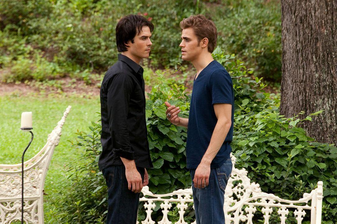 Damon (Ian Somerhalder, l.) fordert seinen Bruder Stefan (Paul Wesley, r.) heraus, wird dieser sich erneut auf einen Streit um die Vampirlady Kather... - Bildquelle: Warner Brothers