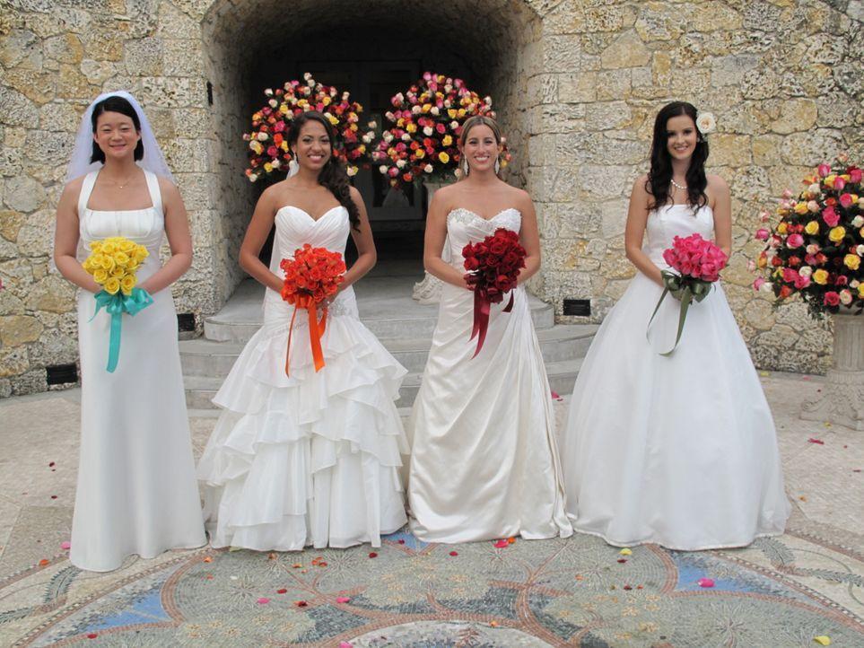 Haben ganz unterschiedliche Vorstellungen von der perfekten Hochzeit: Winnie (l.), Kira (2.v.l.), Jenny (2.v.r.), Kateryna (r.) ... - Bildquelle: 2011 Discovery Communications, LLC