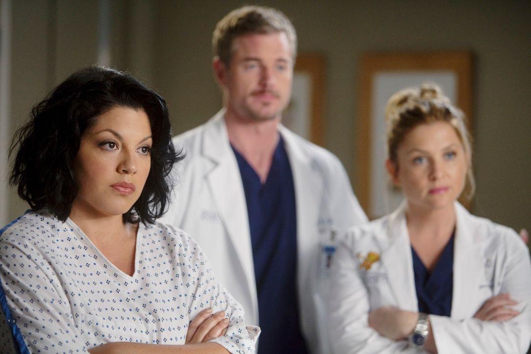 Stehen vor einer neuen Herausforderung: Callie (Sara Ramirez, l.), Mark (Eric Dane, M.) und Arizona (Jessica Capshaw, r.) ... - Bildquelle: ABC Studios